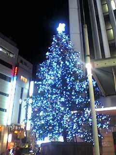 東急百貨店前のツリー