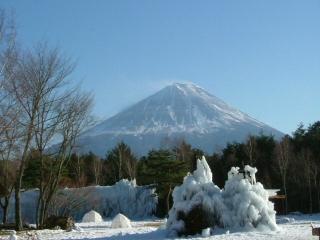 西湖 野鳥公園からの富士