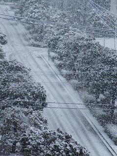 20080203 雪道