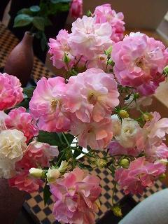 バラ職人新種のバラ4