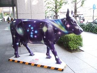 cow 牡牛座ギザ11次元1