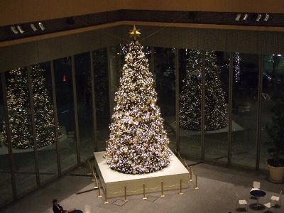 丸ビル・クリスマスツリー