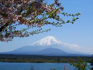 精進湖からの富士3