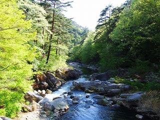 羅漢寺橋からみた峡谷