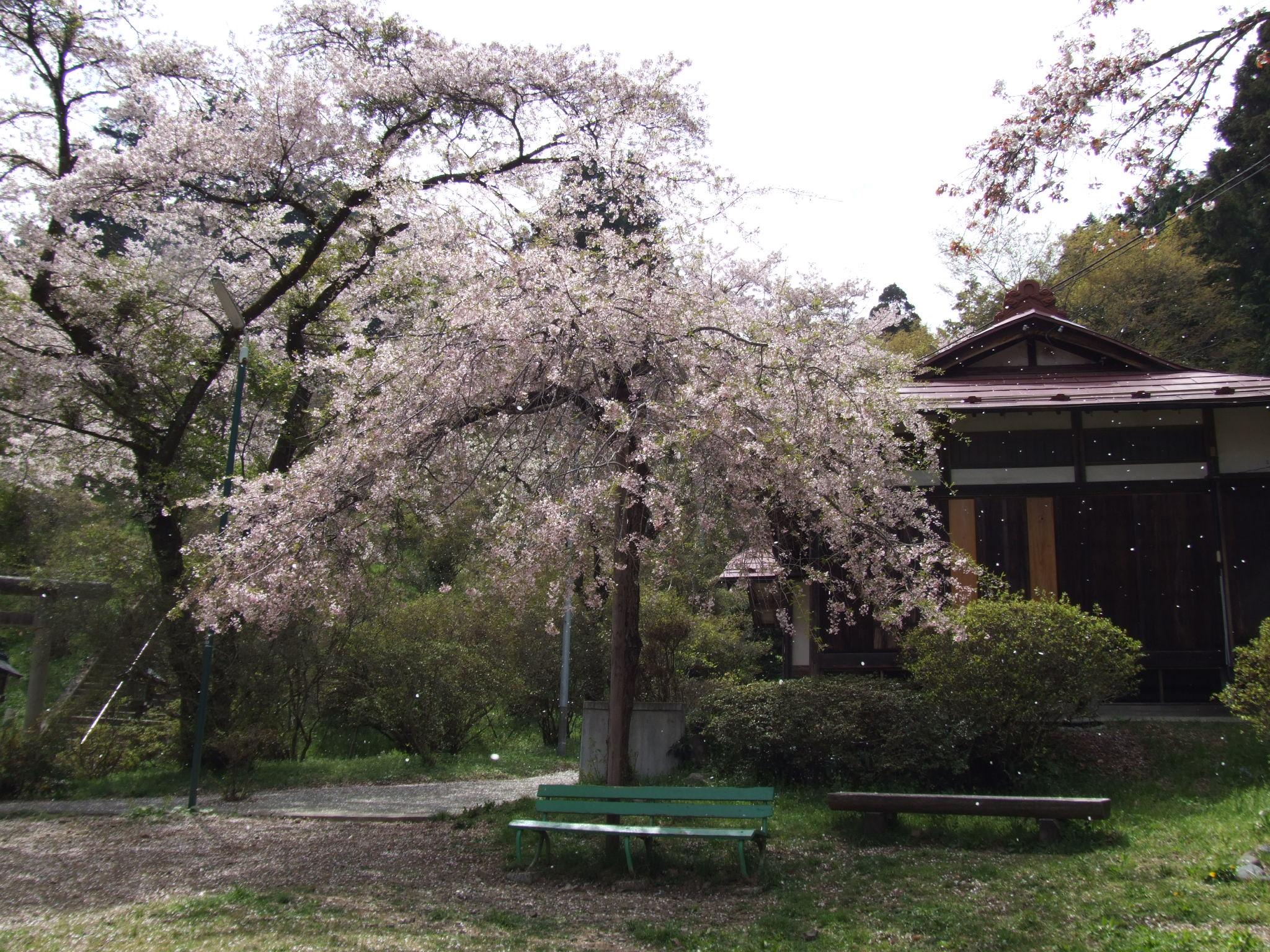 多摩 愛宕神社