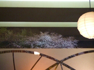 彦根城のお堀の夜桜