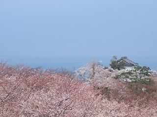 天守閣からみた琵琶湖