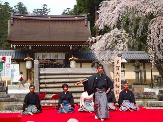多賀大社神橋桜狂言2