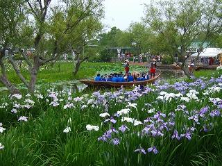 20070624 佐原水生植物園