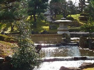 公園の桜滝