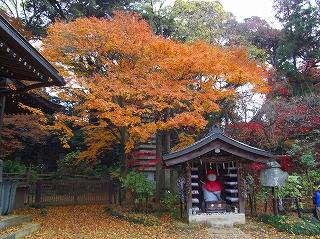 地蔵堂と紅葉