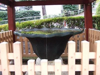 護国寺 水鉢